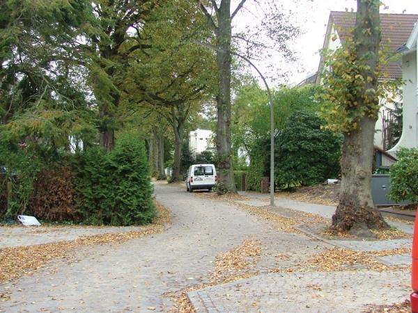 merckelweg